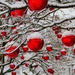 Weihnachtsschmuck aus verschiedenen Materialien basteln